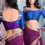 Royal Exquisite Blue Shade Blouse