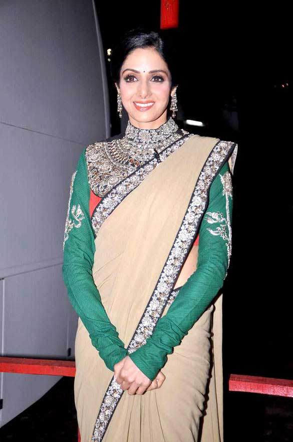 sridevi-kapoor-heavy-work--sleeveful-blouse