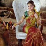 Beautiful-Weddng-Saree