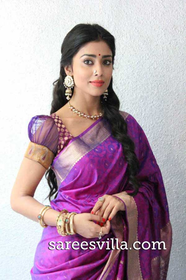Shriya-Saran-Puff-Sleeves-Blouse