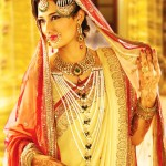 Muslim Wedding Saree