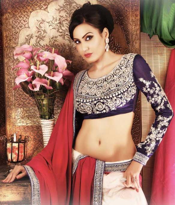 kamya-punjabi-full-sleeves-blouse-work