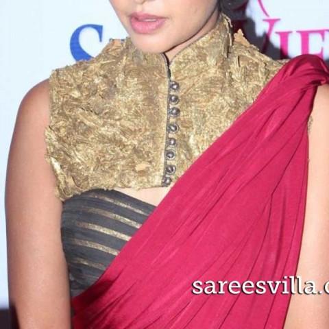 Bindu-Madhavi-collar-blouse-Sareesvilla.com