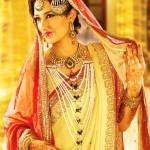 Muslim Wedding Saree